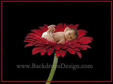 DIGITAL PHOTOGRAPHY BACKGROUNDS KIDS Children  BACKDROPS PROPS