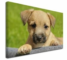 More details for border terrier puppy 'love you mum' x-large 30