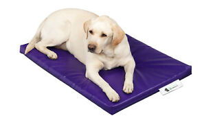 "Dog Bed Cage Crate Matt Chew Resistant Waterproof Tough & Durable Purple 5cm 2"""