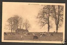 SIRAN (15) BERGER avec moutons 1941