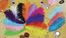 Large Jumbo Big Ostrich Feathers Plummage Plume Pluma Fluff Quill Color 2-Count