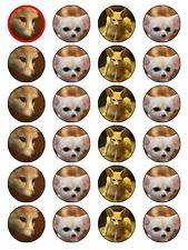 """X24 1,5 """"FENNEC FOX Animale Cupcake Topper Decorazione su Commestibili Carta di riso"""