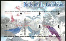 MONTSERRAT BIRDS OF THE CARIBBEAN MNH MINT SOUVENIR SHEET 2003