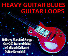 Music Producer Samples Rock Guitar Loop Library WAVFiles HipHop Pop 200 files