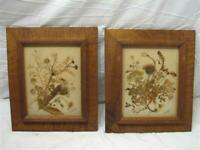 Pr Early Weed & Seed Folk Art Tiger Maple Wood Frame Switzerland 1967 Wooden