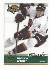 2013-14 Utah Grizzlies (ECHL) Andrew O'Brien (Texas Stars)