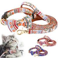 Leder gepolstert Hundehalsband und Leine Verstellbar Katzenhalsband Fliege Blau