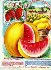 Salzers Vintage Fruit Vegetable Seed Packet Catalogue Advertisement Poster