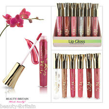 24 x BIG LIP GLOSS LUXURY DIFFERENT SHADES LONG LASTING DISPLAY BOX Wholesale UK