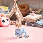 Pet Dog Clothes Jumpsuit Soft Cozy Puppy Dog Shirt Costumes Cat Pajama Apparels