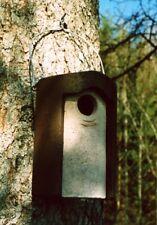 Naturschutzprodukt Starenhöhle Typ 3S Flugloch 45 mm