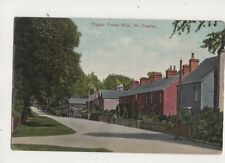 Tilgate Forest Row Crawley Sussex 1909 Postcard 613b