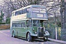 London Transport RLH44 MXX244 6x4 Bus Photo Ref L188