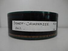 Chimpanzees  Disney 35mm Movie Trailer film collectible FLAT 2minutes