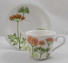 Villeroy & and Boch ALTHEA NOVA tea / coffee cup and saucer NEW NWL