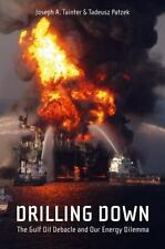 Drilling Down : The Gulf Oil Debacle and Our Energy Dilemma by Joseph A. Tainter
