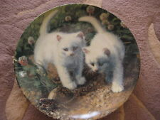 """A Chance Meeting:White American Shorthairs"" Amy Brackenbury First 1987 Plate"