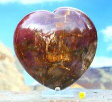 More details for huge petrified wood polished heart - arizona rainbow fossilised tree 3278g