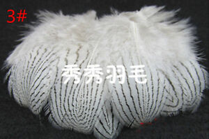 Wholesale 10-100PCS 2-24inches  White Pheasant Tail  Peacock Feathers  DIY