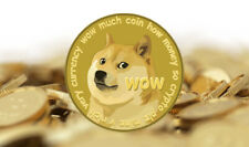 PayPal VISA or Credit >>> to >>> 500 Dogecoin (DOGE) CRYPTO MINING CONTRACT