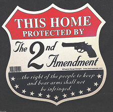 """This Home Protected by the Second Amendment"" Decorative Sign"