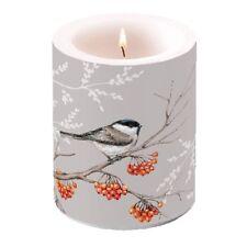 Kerze, Lampionkerze BIRD ON BRANCH 12cm by Ambiente | Vogel, Meise