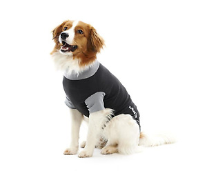 Buster Classic Body Suit for Dogs alternative to vet collar medical pet shirt