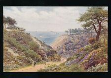 Hampshire Hants BOURNEMOUTH Durley Chine Artist Quinton c1930/40s? Salmon#918PPC