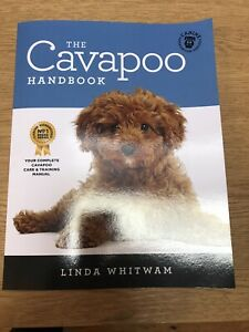 The Cavapoo Handbook: The Essential Guide for New & Prospec... by Whitwam, Linda