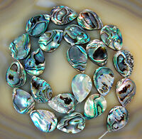 """Natural Abalone Shell Gemstone Beads 15.5"""" Oval Square Coin Oblong Etc"""