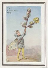 CICELY MARY BARKER c1930 THE WILLOW-CATKIN FAIRY Painting Vintage Art Book Print