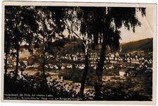 Ansichtskarte Luftkurort und Sommerfrische Biedenkopf - Blick Berggartenterrasse
