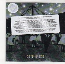(DN34) Cate Le Bon, Puts Me To Work - 2012 DJ CD