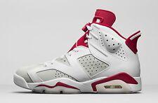2017 Nike Air Jordan 6 Retro Bg Sz 4.5Y Alternate Hare Pure Platinum 384665-113