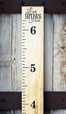 DIY Vinyl Growth Chart Ruler Decal Kit stickers- Large # style grows here