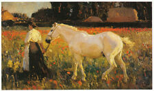 Poppyfield, Sir Alfred munnings Vintage Cavallo Stampa 1983 pronto montato SUPERBA