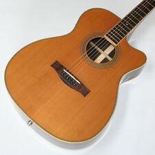 Western guitarra, folk -/auditorio, palisanderkorpus, Massive zederdecke, preamp, g79
