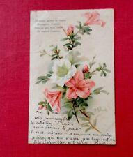 CPA. 1903. Illustrateur. S.N.BRASCH. Fleurs. Lys.