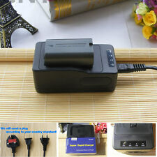 Battery+charger for Panasonic VW-VBD40 CGP-D320 CGR-D120 CGR-D28S PV-DAC11C