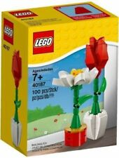 LEGO 40187 FLOWER DISPLAY RED ROSE WHITE DAISY FLOWERS Valentine NEW -SHIPS INTL