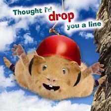 Bungee! Crazy Gang Guinea Pig Blank Greetings Card Thought I'd drop you a line