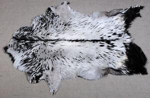 GOAT Western taxidermy Hide Rug Natural Pattern Fur Goat Hide Rode SA-4968