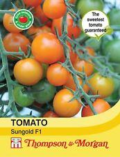 Thompson & Morgan-verduras-tomate Sungold F1 Hybrid - 8 semillas