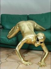 Fancy Dress Metallic Gold Full Body Zentai Spandex Lycra Catsuit Black Eyes