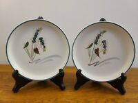 "Set of 2 Denby-Langley Greenwheat 6 5/8"" Bread & Butter Plates-Albert College UK"