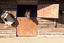 Wood Horse Stable Photography Background Rural Backdrop 7x5 Portrait Photo Prop