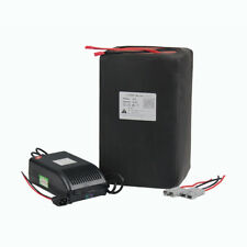 48v50ah Rechargeable LiFePO4 Battery Pack For 2500W Power With 5A Charger BMS
