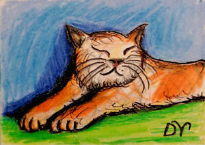Aceo, cat, lazy, kitten, cute, kitty, orange, pet, home, sweet, waiting, fat cat