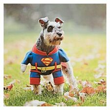 SUPERDOG Superman Super Dog Pet Lover Birthday Father's Day Greeting Card