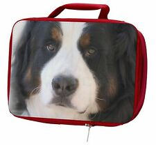 More details for bernese mountain dog insulated red school lunch box/picnic bag, ad-ber5lbr